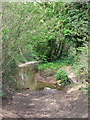 SO7689 : A Very Wet Byway, Wooton, Shropshire by Roger  Kidd