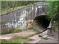 NZ4440 : Culvert under the Horden to Blackhall Colliery road by Carol Rose