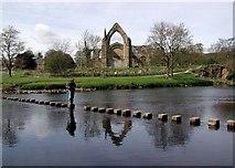 SE0754 : Bolton Priory by Paul Glazzard