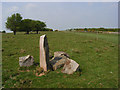 SU1271 : Standing stone and gallop, Overton Down by Andrew Smith
