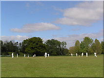 TG1807 : University Playing Fields, Colney Lane - village cricket in progress by Helen Hanley
