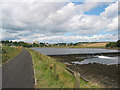 NU2505 : The weir on the Coquet river near Warkworth Castle by Pauline E