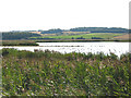 TG0544 : Cley salt marshes, nature reserve by Pauline E