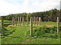 NT9433 : Maelmin - reconstruction of henge by Lisa Jarvis