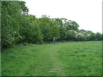 SP3177 : Wild flower meadow, Canley Ford by E Gammie