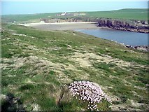 SH3370 : Porth Trecastell, or Cable Bay by Lynne Kirton
