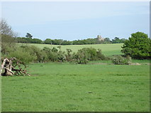 TL7835 : Hedingham Castle from Colne Valley Farm Park by Oxyman