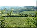 SO1785 : Farmland at Anchor by David Medcalf