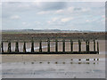 NU2604 : The ruined North Jetty at Amble by Pauline E