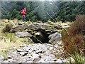 NN9246 : Forest Road Culvert, Griffin Forest by Robert Bone