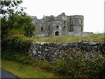 SN0403 : Carew castle by Chris Gunns