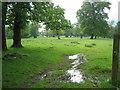 SP9734 : Woburn deer park footpath by ian saunders