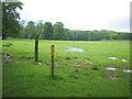 SP9734 : Woburn deer park footpath ...and deer by ian saunders