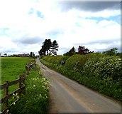 NZ1368 : East Heddon by Newbiggin Hall Scouts