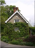 ST5707 : Hairy house at Drive End, Melbury Osmond by Graham Horn