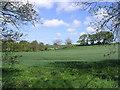 NZ1999 : Arable farmland at East Thirston by Walter Baxter