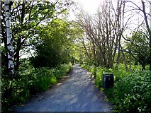 NZ1465 : Wagon way Newburn by Newbiggin Hall Scouts