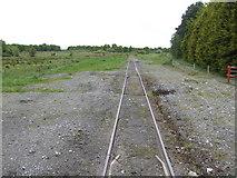 N5316 : Railway line west of Cushina by Jonathan Billinger