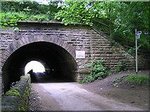 SE2425 : Howley Mill Viaduct on Kirklees Way, Upper Batley by John Readman