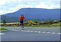 NH6681 : The hard way to cross the Struie by Donald H Bain