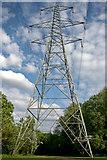 SJ8092 : Electricity Pylon, Sale Water Park by Phil Champion