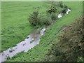 SK6439 : Polser Brook by Donnylad