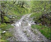 NM9447 : Ford across a tributary of the Glenstockdale Burn by Stephen Whittaker and Katharine Oakeshott