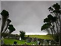 C0518 : Churchyard Gartan by Chris Gunns