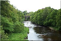 NS7354 : The River Avon at Chatelherault Country Park by Elliott Simpson