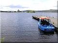 H0973 : St Brigid at Lough Derg by Kenneth  Allen