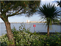 SU4208 : Hythe Pier from the Marina by Colin Smith