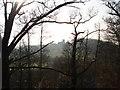 SO9564 : Hanbury Church from Piper's Hill wood by Trevor Rickard