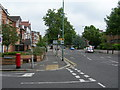 TQ2905 : The Drive at the junction of Wilbury Avenue, Hove by Danny P Robinson