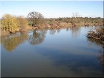 SO5628 : River Wye from Sellack Boat Suspension Bridge by Trevor Rickard