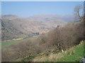 SH6553 : Wooded Hillside of Afon Glaslyn by Trevor Rickard