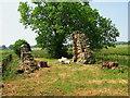 NU1814 : Ruin by Lisa Jarvis