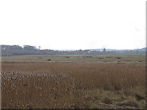 TG0444 : The windmill at Cley seen across the reed beds by James Gibb