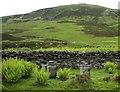 NN9734 : Beehives in Little Glen Shee by Lis Burke