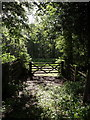 SY3699 : Gate near Bridewell by Derek Harper