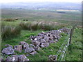 NS7180 : Fence and Wall on Kilsyth Hills by Chris Upson