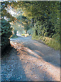 SD6222 : View looking down Oakmere Avenue, Withnell by Cole Smith