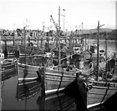 NM6797 : Mallaig harbour by Dr Neil Clifton