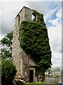 TG4218 : Ruined tower of St. Peter's church, Bastwick by Evelyn Simak