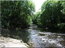 SD9701 : River Tame by Alexander P Kapp