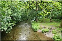 SX4970 : Whitchurch: the river Walkham by Martin Bodman