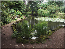 SK4924 : Ornamental pool in Whatton Gardens by Jerry Evans