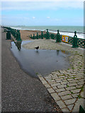TQ2804 : Rook, Hove Beach by Simon Carey
