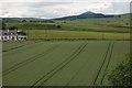 NO2502 : Farmland by Paul McIlroy