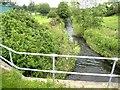 NZ2128 : River Gaunless, Bishop Auckland by Oliver Dixon