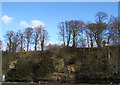 NU2406 : The Hermitage, Warkworth by Joan Robinson